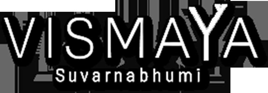 Vismaya logo